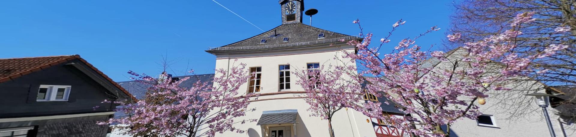 Frühling in Wingsbach