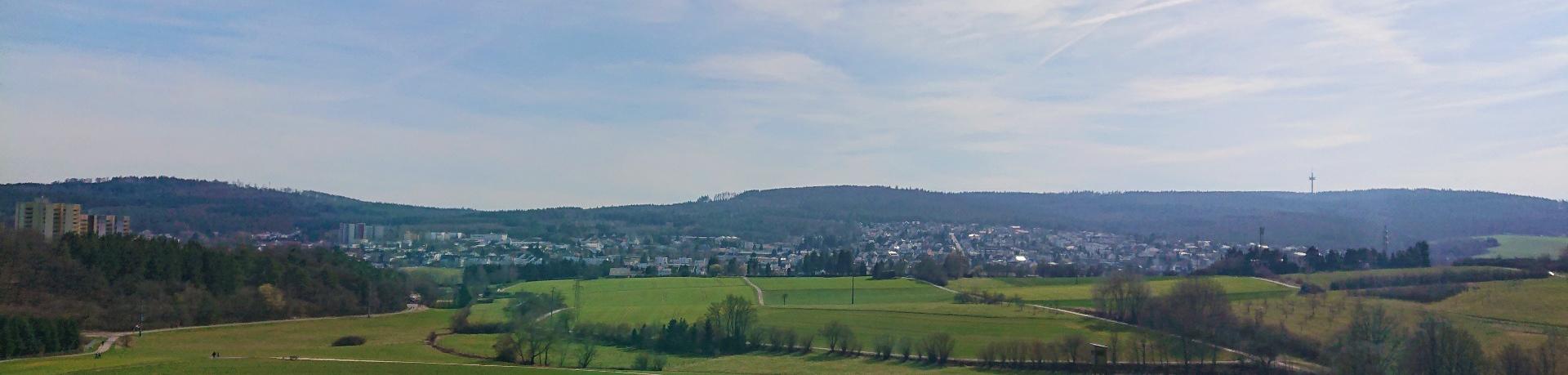 Panoramablick über Hahn und Bleidenstadt